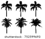silhouette coconut tree ...   Shutterstock . vector #752599693