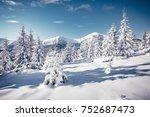 scenic image of frozen fir... | Shutterstock . vector #752687473