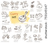 A Set Of Curry Spices. Hand...