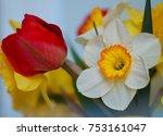 spring floral border  beautiful ...   Shutterstock . vector #753161047