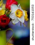 spring floral border  beautiful ...   Shutterstock . vector #753161053