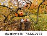 pumpkin  autumn leaves and... | Shutterstock . vector #753210193