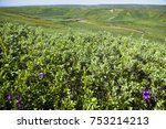 the landscape of the arctic... | Shutterstock . vector #753214213