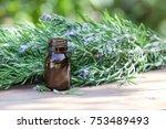 rosemary oil and rosemary plant.... | Shutterstock . vector #753489493