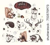 cute animal drawings set.... | Shutterstock .eps vector #753570973