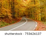 autumn forest road  | Shutterstock . vector #753626137