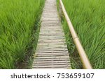 bamboo bridge on green rice... | Shutterstock . vector #753659107