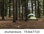 lake of two rivers campground... | Shutterstock . vector #753667723