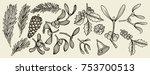 vector vintage set of hand... | Shutterstock .eps vector #753700513