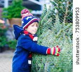 two little sibling kid boys... | Shutterstock . vector #753809953