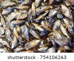 fresh mussels at the fish... | Shutterstock . vector #754106263