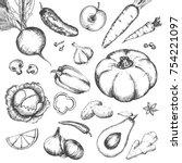 hand drawn vegetables vintage... | Shutterstock .eps vector #754221097