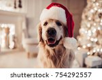 merry christmas and happy new... | Shutterstock . vector #754292557