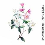 flowers are full of romance ... | Shutterstock . vector #754312363