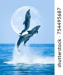 group of jumping dolphins ... | Shutterstock . vector #754495687