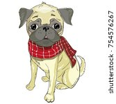 pug  head  dog  isolated ... | Shutterstock . vector #754576267
