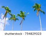 coconut palm trees in bavaro... | Shutterstock . vector #754829323