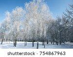 winter snowy scene. snow on the ... | Shutterstock . vector #754867963