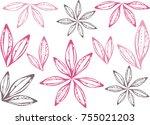 leaves  flowers  graphics .... | Shutterstock .eps vector #755021203