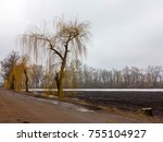 fields covered with snow rainy... | Shutterstock . vector #755104927