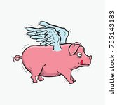pink pig fly hand drawing with... | Shutterstock .eps vector #755143183