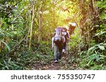 group of hiking walk in the... | Shutterstock . vector #755350747