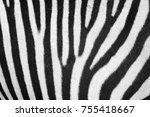 zebra animal skin texture as... | Shutterstock . vector #755418667