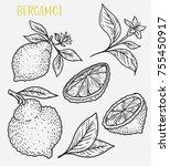 sketch of lemon fruit with leaf.... | Shutterstock .eps vector #755450917