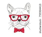 french bulldog  hand drawn...   Shutterstock .eps vector #755504413