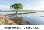 tree and water reflection at... | Shutterstock . vector #755594533