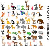 extra large set of animals... | Shutterstock .eps vector #75569161