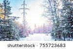 winter forest frost evening... | Shutterstock . vector #755723683