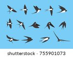 Stock vector swallow flying flat icons set vector illustration 755901073