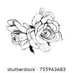 rose blosssom sketch | Shutterstock . vector #755963683
