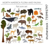 north america flora and fauna... | Shutterstock .eps vector #755993797