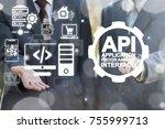 api   application programming... | Shutterstock . vector #755999713