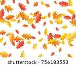 oak leaves flying confetti... | Shutterstock .eps vector #756183553