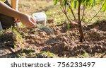 farmer giving organic... | Shutterstock . vector #756233497