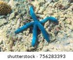 blue starfish on sea bottom.... | Shutterstock . vector #756283393