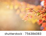 autumn maple leaf background in ... | Shutterstock . vector #756386083