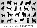 Stock vector dog breeds silhouettes dog icons collection chinese zodiac vector 756452827