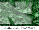 creative layout of leaves with... | Shutterstock . vector #756671677