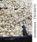 champignons. fresh champignons  ... | Shutterstock . vector #756730273