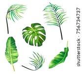 set of botanical illustrations... | Shutterstock . vector #756734737
