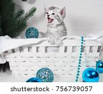 Stock photo the kitten in the basket screams meow kitten congratulates with christmas and a happy new year 756739057