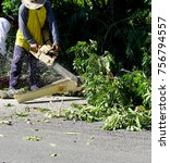 Small photo of Logger by using a chain saw engine in Asia