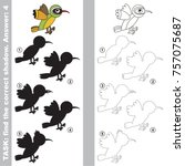 funny green bird xantus set to... | Shutterstock .eps vector #757075687