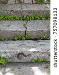 Old Concrete Staircase With...