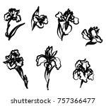japanese iris flower set.hand...   Shutterstock .eps vector #757366477