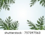 leaves set in the frame around... | Shutterstock . vector #757397563